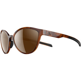 adidas Tempest Glasses brown havanna/brown